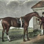 Race Horse Painting by Stubbs